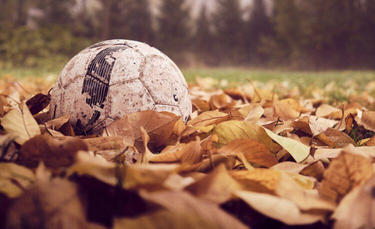 soccer, fall, leaves-4586282.jpg